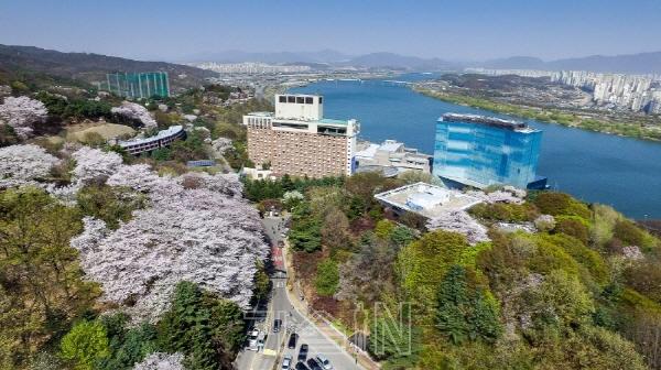 서울 곳곳서 펼쳐지는 봄의 향연 벚꽃축제 21일까지 개최